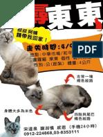 貓咪走失-貓咪東東-花蓮主人 宋達泉0912224868 03-8353111