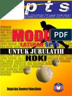 Hoki Modul (Sports)