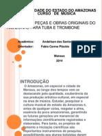 modelo de apresentação PAIC parcial-2012