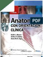 Anatomia Orientacion Clinica Moore 6a Rinconmedico.net