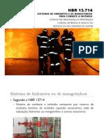 Sistema de hidrantes e mangotinhos NBR 13714.pdf