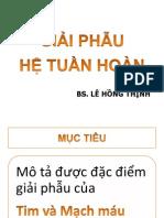 Dr Thinh - GiẢI PHẪU hệ tuần hoàn