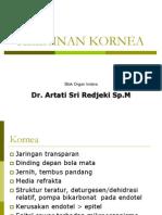 6a.corneal Disorder - Dr Artati