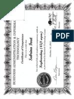 sabrina fout certificate - keyboarding 45 wpm