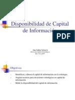 Cap 9 - Disponibilidad de Capital de Información