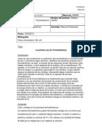 Resumen Profesional Cap. 19