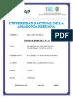 BIOLOGIA GENERAL N° 12 ECOSISTEMAS ESTUDIO DE UNA COMUNIDAD VEGETAL LOCAL