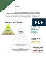 Estructura de Los Perfumes