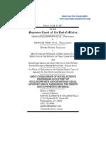Amicus Brief Regnerus Hollingsworth V Perry