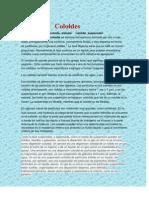 cartilladecoloides-121107150821-phpapp02