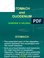STOMACH AND DUODENUM 10-27
