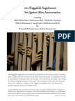 Passover Haggadah Supplement - Crying Out Against Mass Incarceration