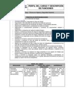 Perfil Técnico en Higiene y Seguridad Industrial