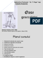 Curs 2. Osteogeneza