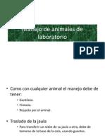 Manejo de Animales de Laboratorio 1220763778896047 8