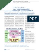 fys21_20-22.pdf