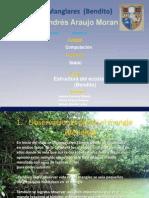 5a Grupo 4 Trabajo de Ecologia (Bendito)