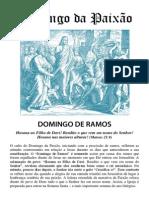 Culto Domingo Ramos Web