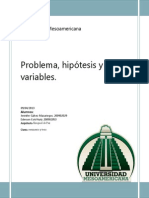 problema hipotesis variables.docx