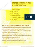 Tema 3 Factores Determinantes de La Estructura