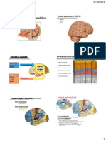 aula-2_cortex-2013_wilson.pdf