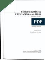 Sentido.numerico.e.iniciacion.al.Algebra
