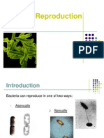 7. Bacterial Reproduction