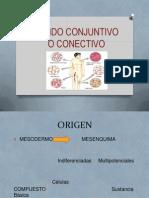 Tejido Conjuntivo o Conectivo - Seminario