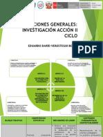 Orientaciones Generales-Inv. Accion II