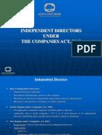 Independent Directors Roles