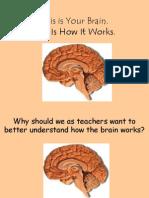 Brain Powerpoint