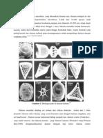 Tes Diatom