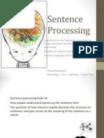 HET 524 Sentence Processing