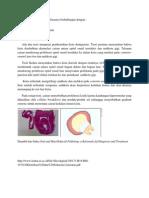 Etiologi Kista Dentigerous Biasanya Berhubungan Dengan