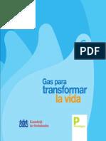 gas-para-transformar-la-vida.pdf
