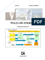 Piata de Energie Aplicatii de Laborator