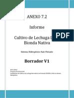 Borrador Manual Lechuga Nativa v1