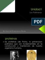 Proteinas 4to Medio