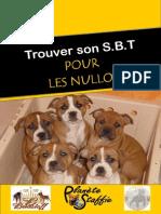 Guide Pour Les Nullo s