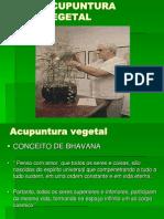 Acupuntura Vegetal