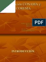 Disertación CONAMA y COREMA