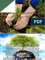 Extencion Exposicion de Plantones Forestales Listo