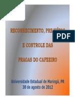 Controle das Pragas.pdf