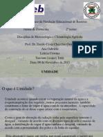 seminario umidade.pptx