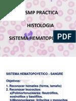 Histologia 2014 - Sangre