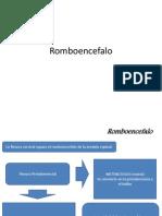 Rom Bo en Cefalo