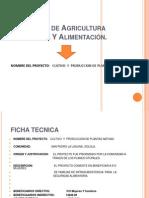 Presentacion Proyecta Plantas Nativas