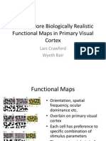 toward more biologically realistic functional maps in primary