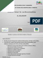 Biocombustibles EL SALVADOR