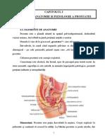 Neoplasm Prostata